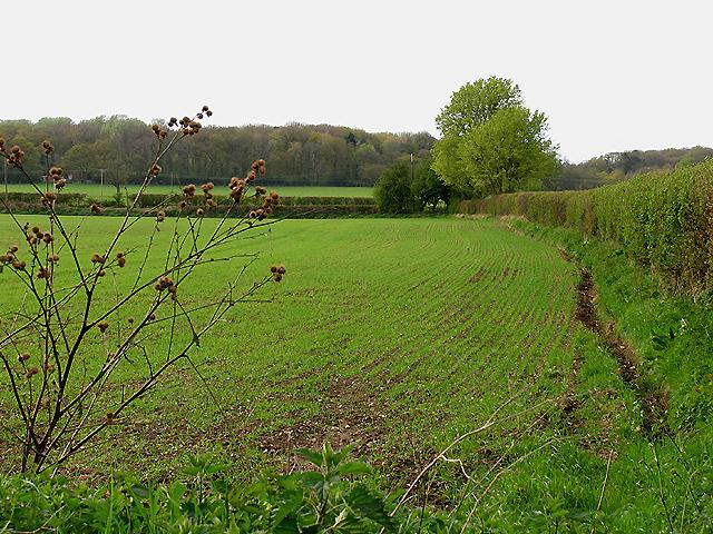 Frogmore Farm near Bradfield