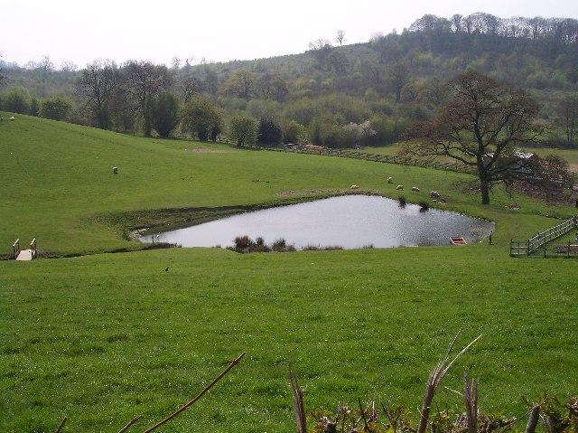 Park Farm New Pond
