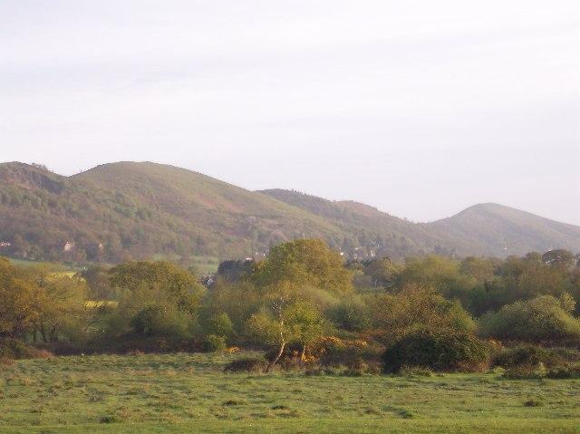 Castlemorton Common