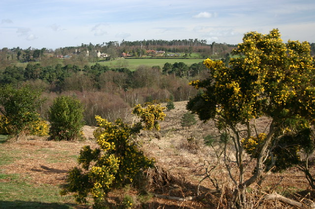 The Old Lodge, Ashdown Forest