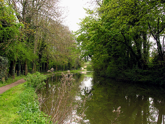 Kennet and Avon Canal : Kintbury