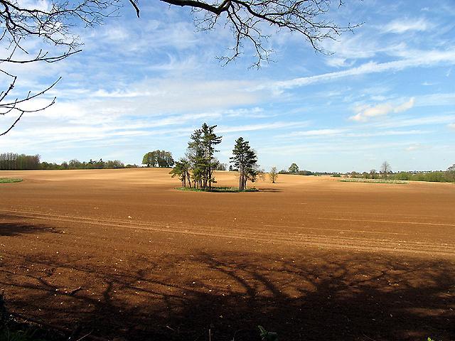 Ploughed Field near Kintbury
