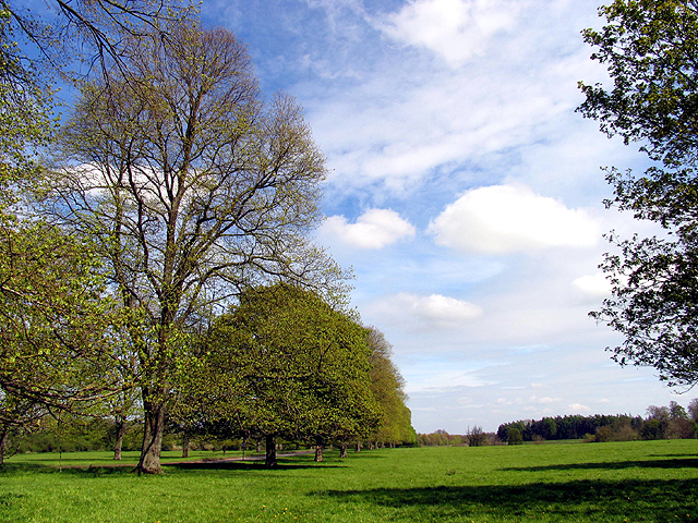 Hungerford Common