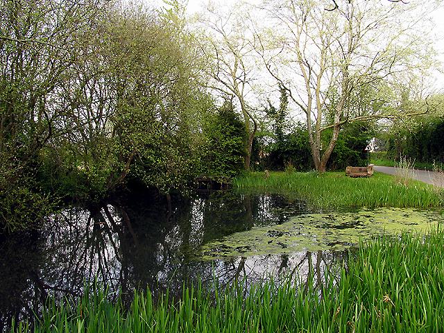Village Pond: Upper Green
