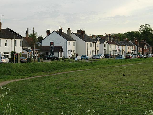 Reigate Heath