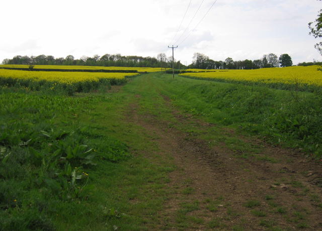 Footpath to Finstock