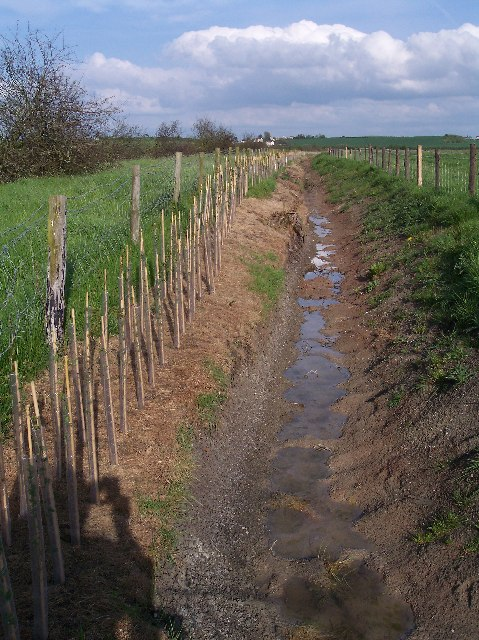 New Drainage Ditch, Longdon Marsh