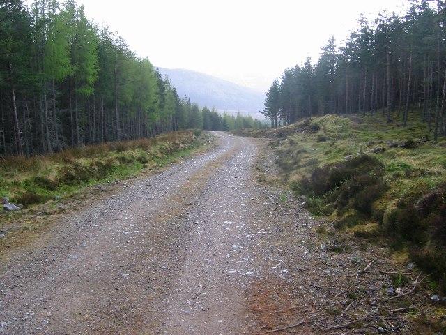 Forest Road, Glen Feshie.