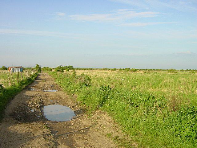 Track to Elmley Ferry