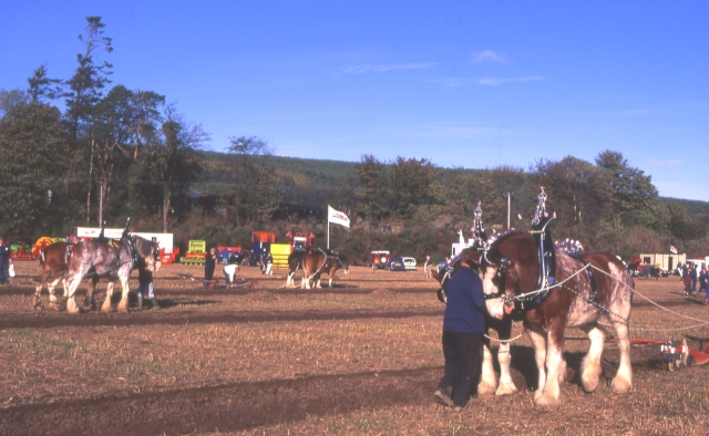 Scottish Ploughing Championships 1995