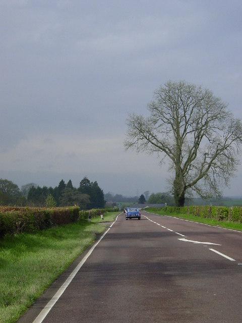 The A7 near Millees Farm