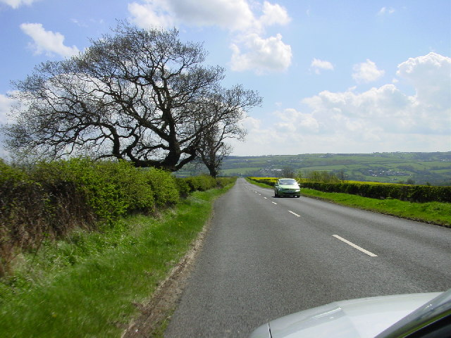 Looking South on Dere Street from Whittonstall Farm