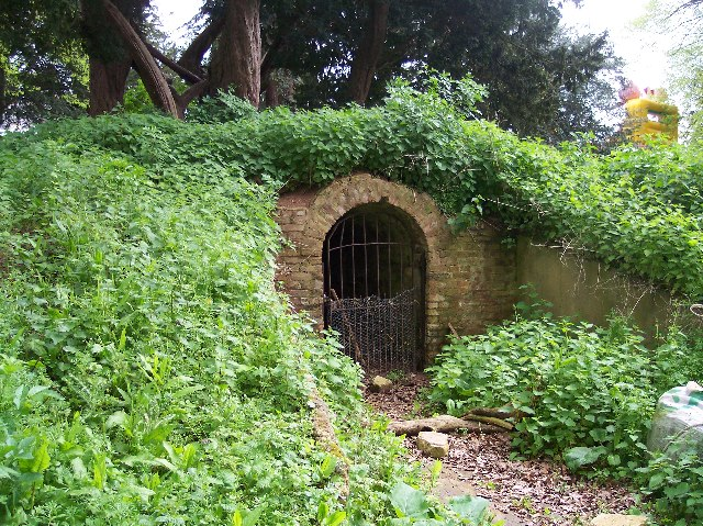 The Ice House, Pull Court