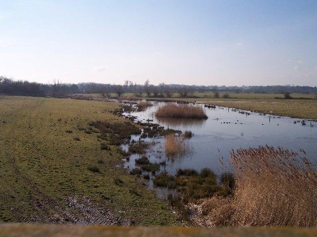 The Wetlands at Slimbridge