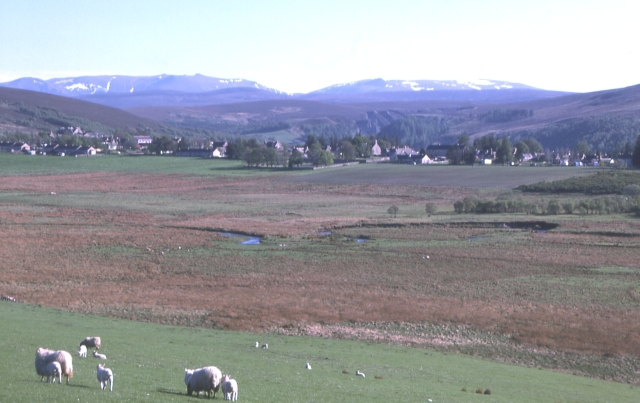 Tomintoul from the north