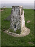 NZ3354 : Triangulation Point at top of Penshaw Hill by Corinne Brown