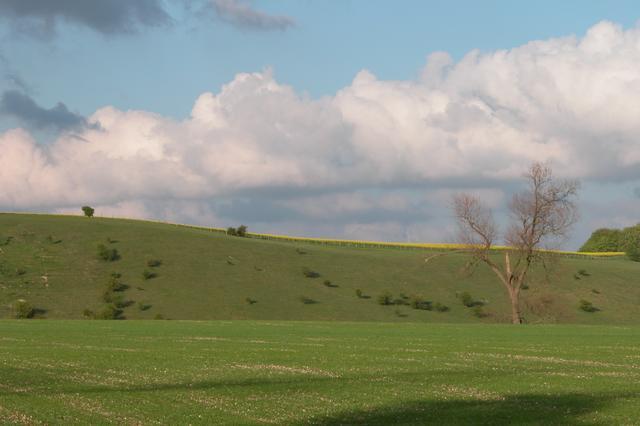 Farmland to the north of Aldbourne