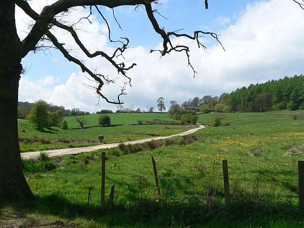 Open farmland near Dudwood Farm