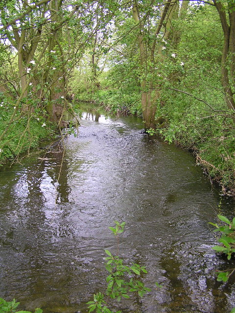 Shell Brook.