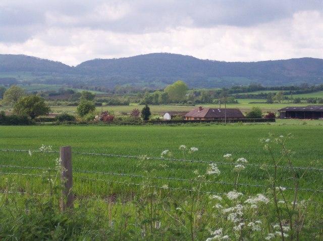 Oak Meadow Farm