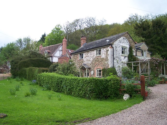 Bumble Hole Cottage, Whiteleaved Oak