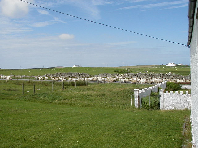 Crofting, Sollas, North Uist