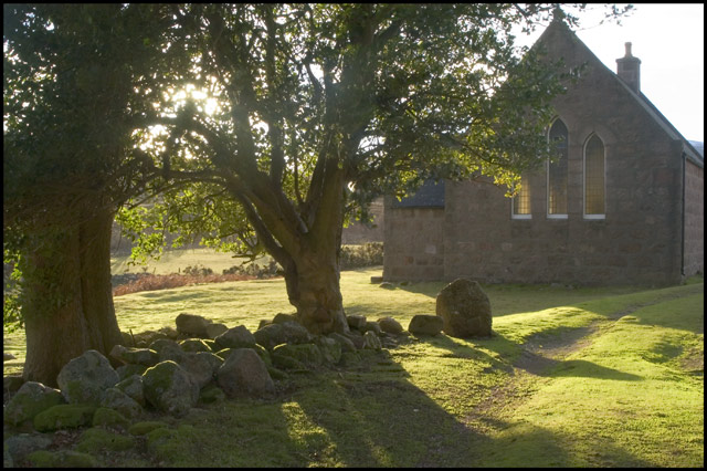 Forest of Birse Kirk