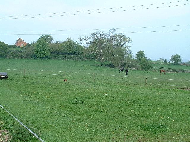 Pithouse Farm near Coddington