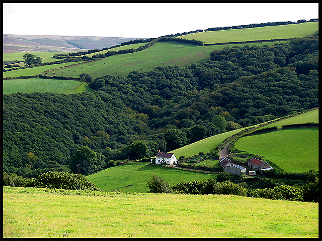 Bromham Farm: Exmoor