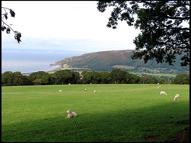 Porlock Hill: Farmland