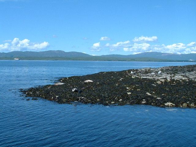 Seal Island - Sgeir Dhonn