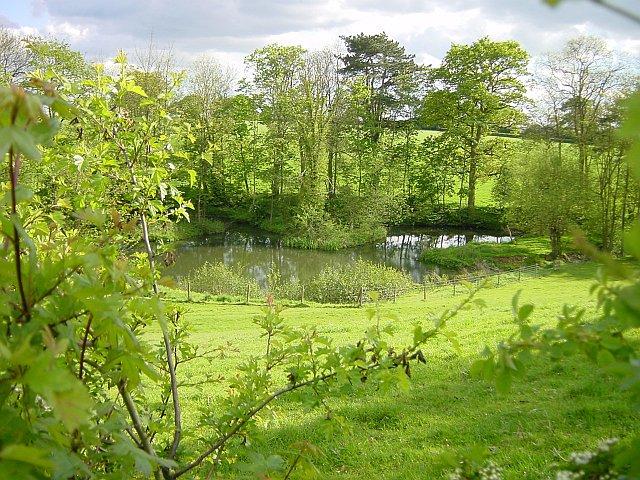 Pond near Wixon Brook