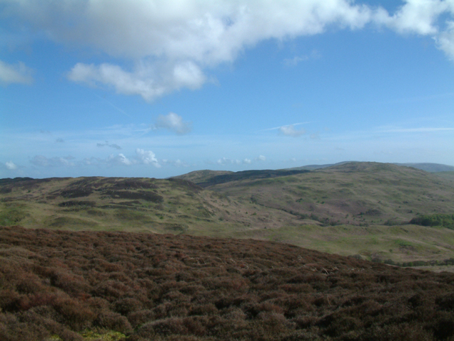Moorland from Yew Bank