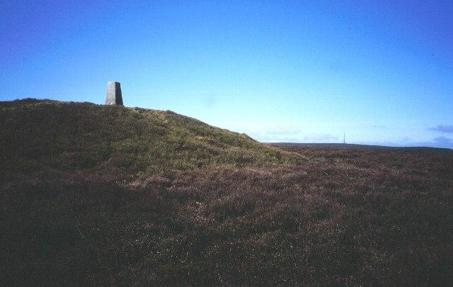 Bache hill