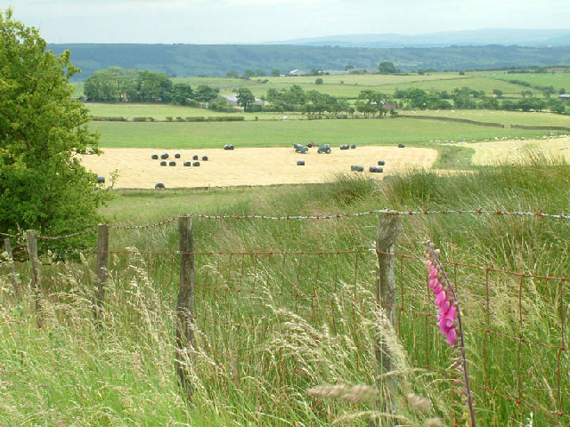 Farmland below Parlick