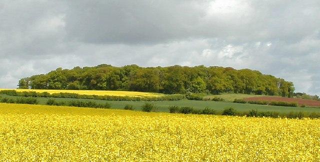 Lewes's Plantation