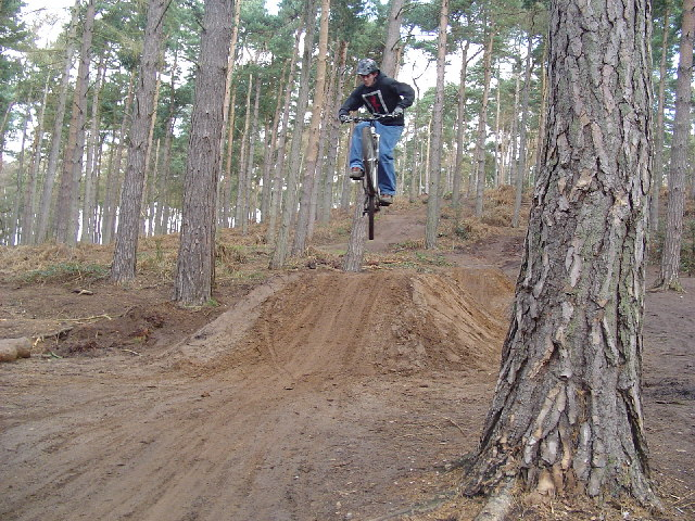 Dirt jumper on dirt jumps at Rowney Warren Woods