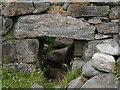 NM0449 : Broch,near Vaul, Tiree by Sue Jackson