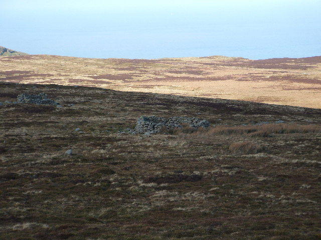 Moorland below Tal Y Fan