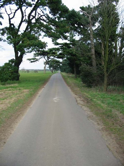Road across the heath