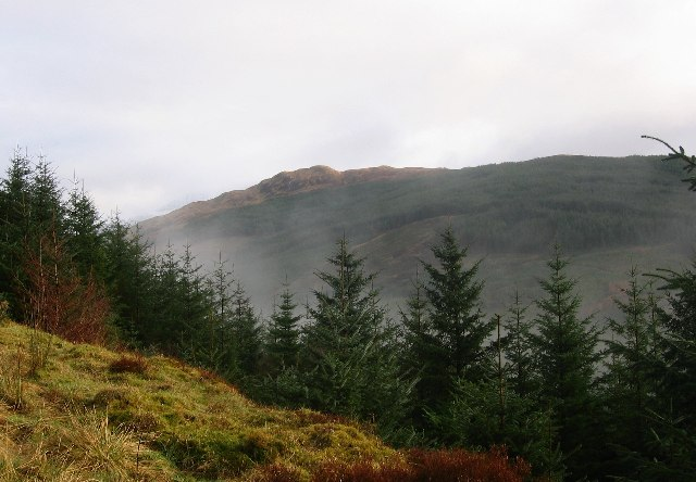 Forestry in Glen Righ
