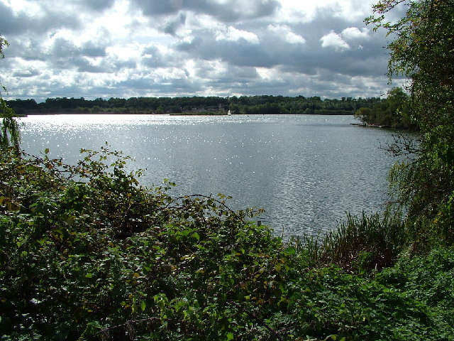 Looking south from Garston Lock