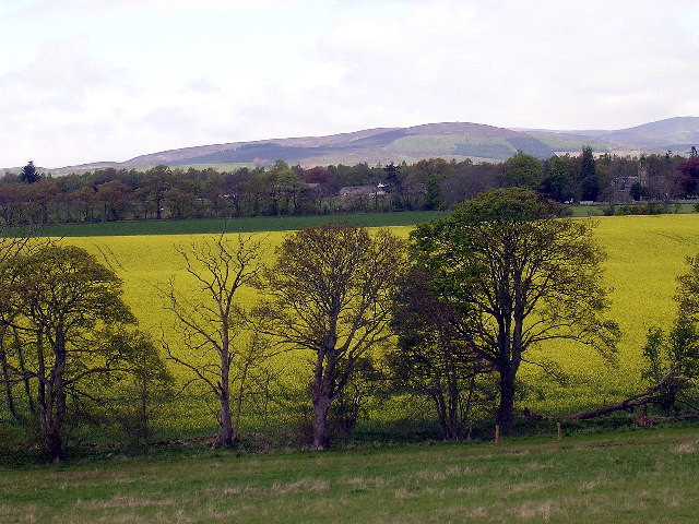Oathlaw from the A90