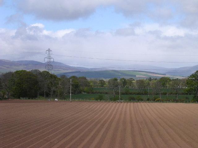 Ridges and Furrows near Brechin