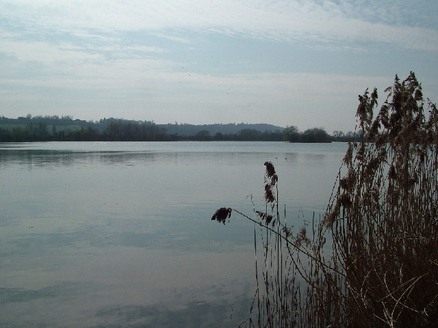 Lake near Little Marlow