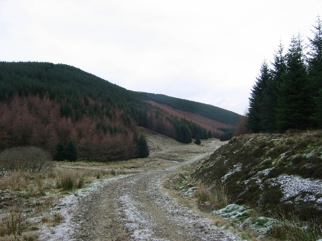 Forestry, Tweedhopefoot.