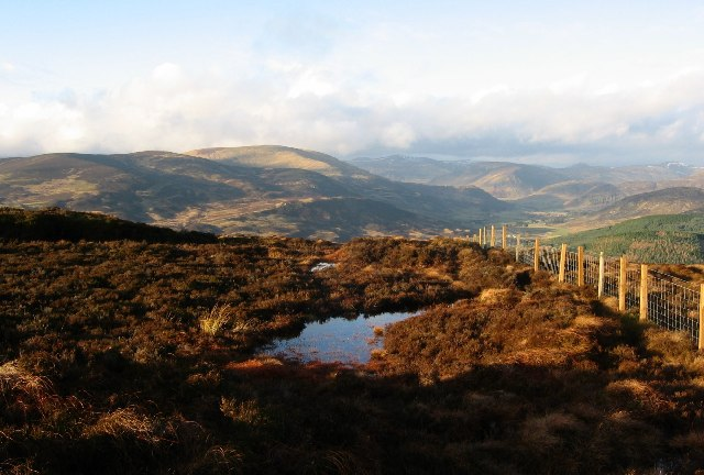 Peat pool on Mount Blair.