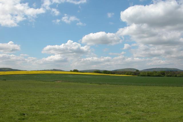 Farmland and Birch Copse.