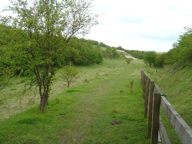 Nature Reserve at Kiplingcotes chalk pit