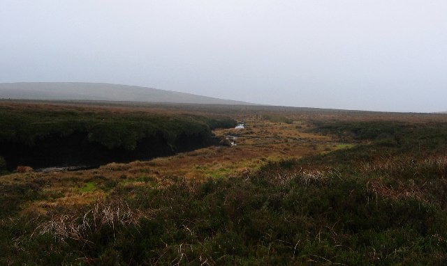Bog, below Darlees Rig.